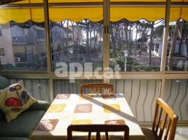 For rent study, 34 m², near bus and train, PINEDA